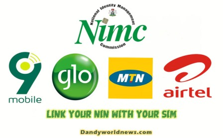 LINK YOUR NIN WITH YOUR SIM